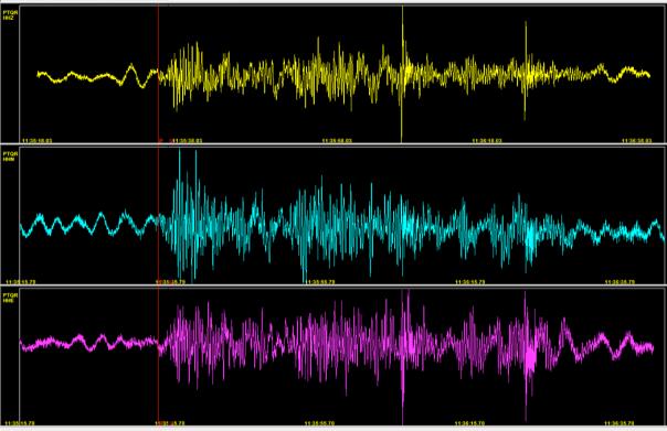 Registrazione del sismometro triassiale di Pietraquaria (PTQR) dalle 13:35:15 alle 13:36:35 (ora italiana). Segnale non filtrato. In alto la componente verticale, al centro quella nord-sud e in basso quella est-ovest.